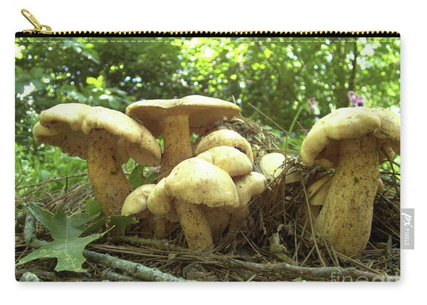 Surprise Fungi In Gibbs Garden Carry-all Pouch