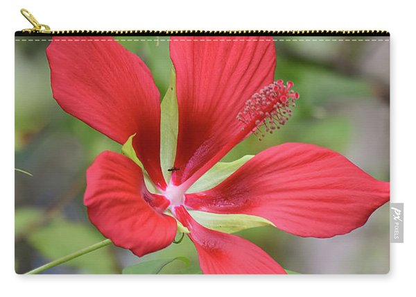 Swamp Hibiscus Carry-all Pouch
