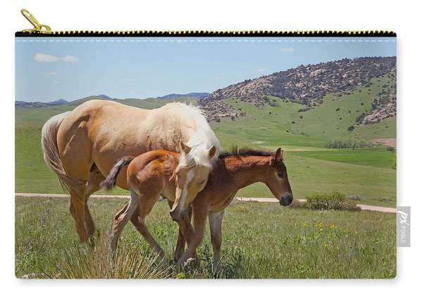 Sweet Comfort Carry-all Pouch