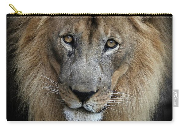 Sweet Male Lion Portrait Carry-all Pouch