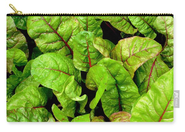 Swiss Chard In A Vegetable Garden 3 Carry-all Pouch