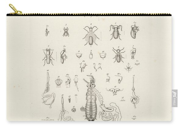 Termites, Macrotermes Bellicosus Carry-all Pouch