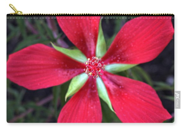Texas Star Hibiscus Red Carry-all Pouch