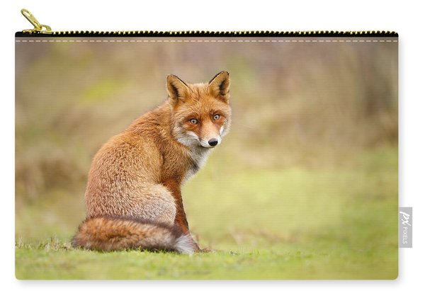 That Look - Red Fox Male Carry-all Pouch