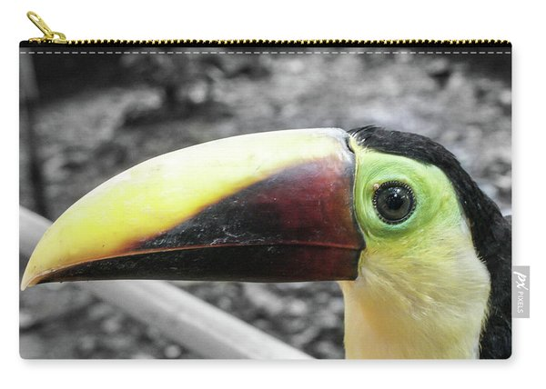 The Big Toucan Carry-all Pouch