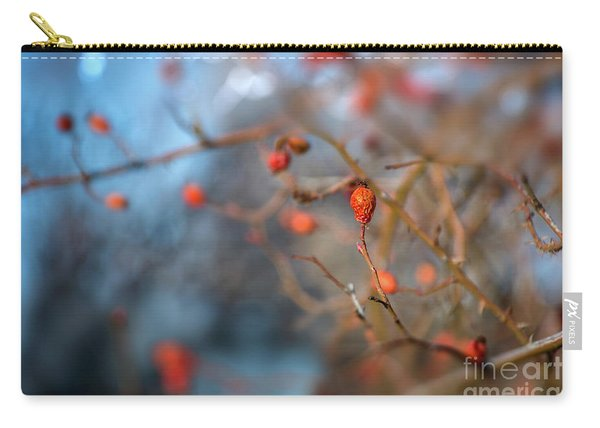 Carry-all Pouch featuring the photograph The Color Of Winter by Susan Warren