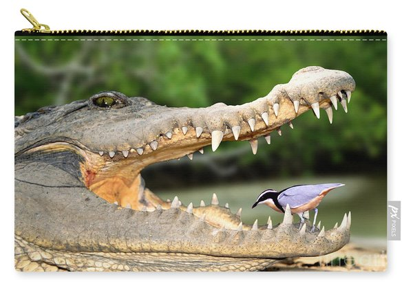 The Crocodile Bird Carry-all Pouch