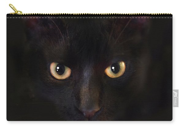 The Dark Cat Carry-all Pouch