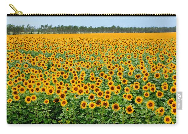 The Field Of Suns Carry-all Pouch