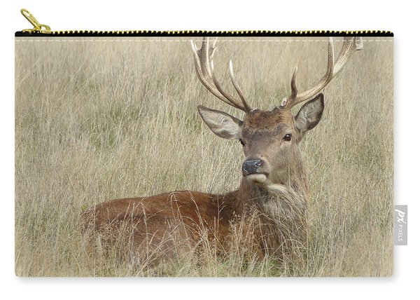 The Gentle Stag Carry-all Pouch