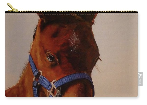 The Halter Carry-all Pouch