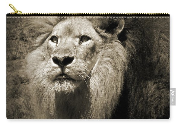 The King II Carry-all Pouch