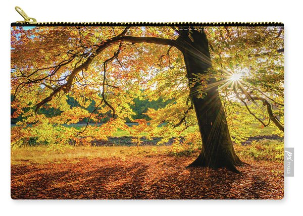 Carry-all Pouch featuring the photograph The Last Rays Of Golden Autumn by Dmytro Korol