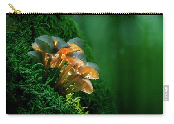 The Magic Lantern II Carry-all Pouch