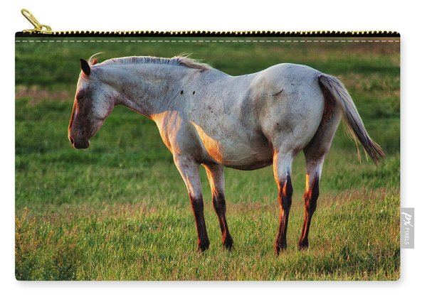 The Mare Carry-all Pouch