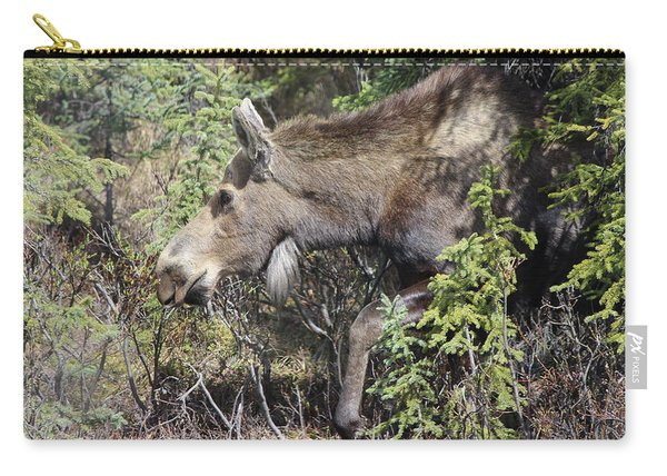 The Moose Carry-all Pouch