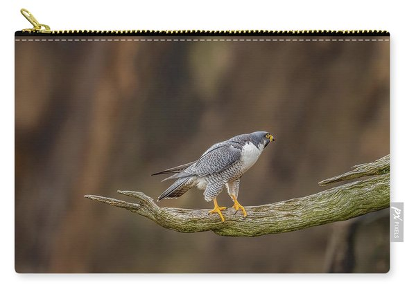 The Peregrine Falcon Carry-all Pouch