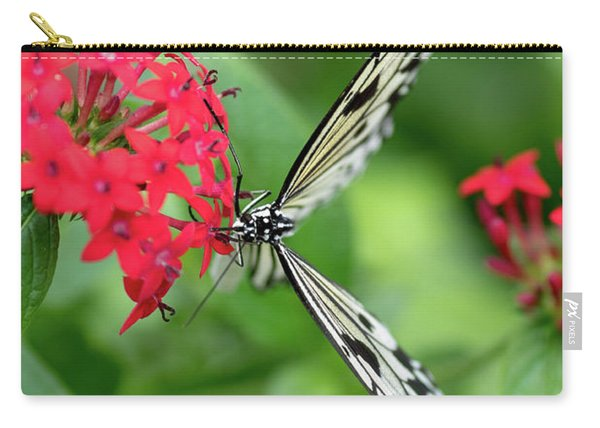 Carry-all Pouch featuring the photograph The Perfect Butterfly Land by Raphael Lopez