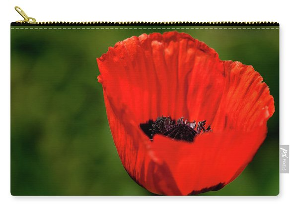 The Poppy Next Door Carry-all Pouch