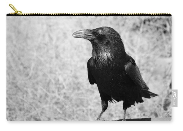 The Raven Carry-all Pouch
