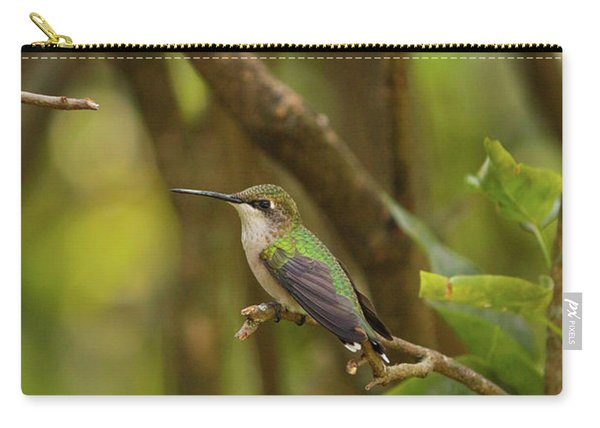 At Rest Carry-all Pouch