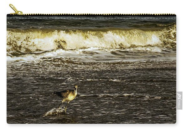 The Wading Willet  Carry-all Pouch