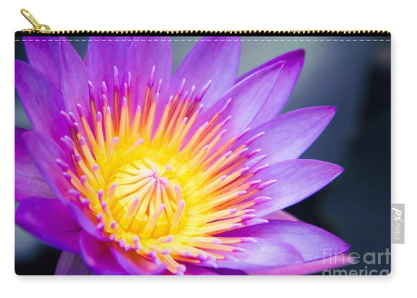 The World Is A Garden Carry-all Pouch