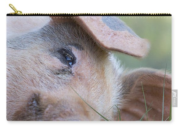 Thelma Lou Carry-all Pouch