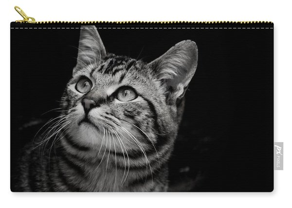 Thoughtful Tabby Carry-all Pouch