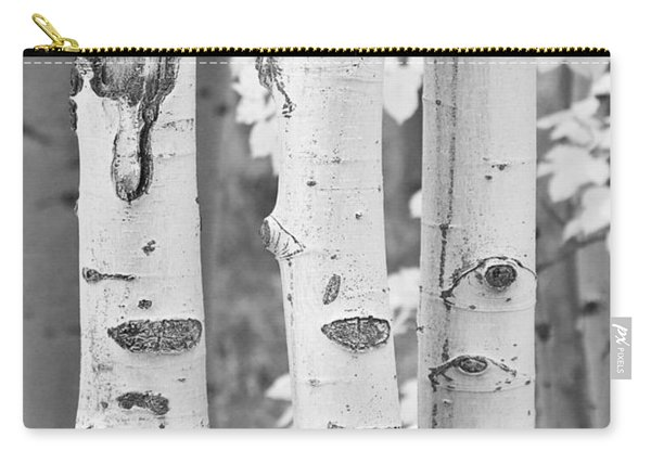 Three Aspens In Black And White  Carry-all Pouch