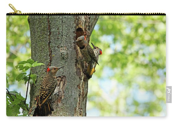 Three Flickers Carry-all Pouch