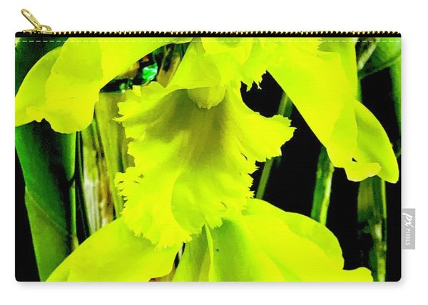 Three Orchids In Yellow Carry-all Pouch