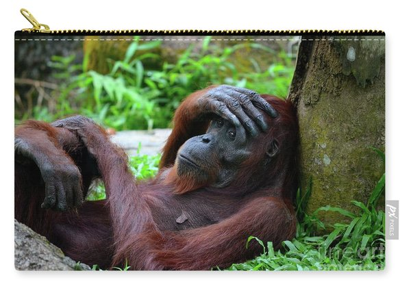 Tired Female Orangutan Ape Rests Against Tree With Hand On Her Head Carry-all Pouch