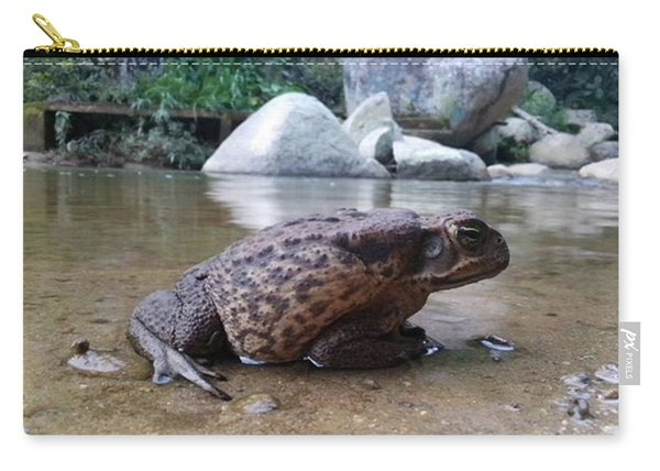 Toad  From Animall By David Carry-all Pouch