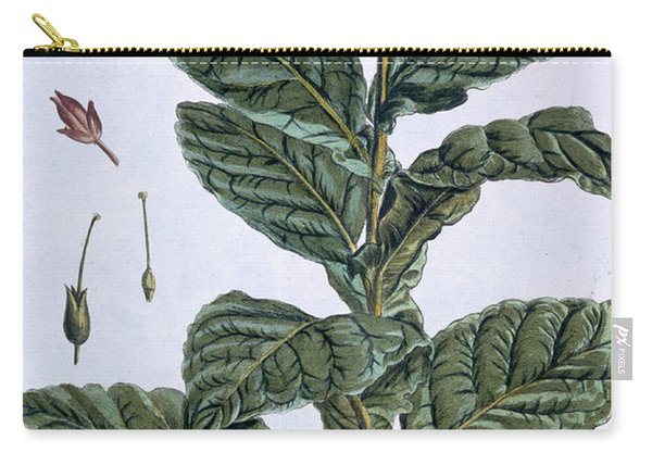 Tobacco Plant Carry-all Pouch
