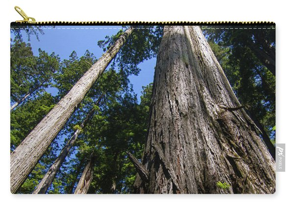 Towering Redwoods Carry-all Pouch