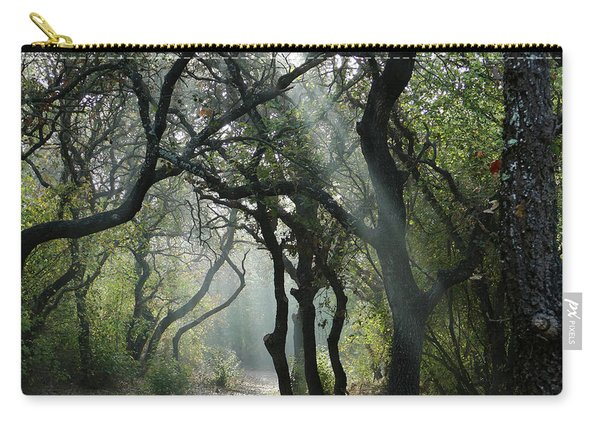 Trail Of Light Carry-all Pouch