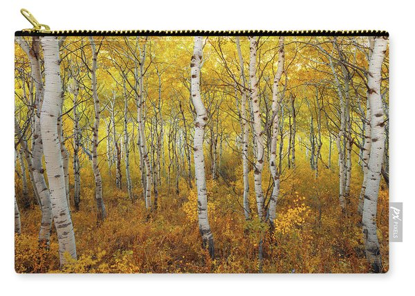 Carry-all Pouch featuring the photograph Transition by Dustin  LeFevre