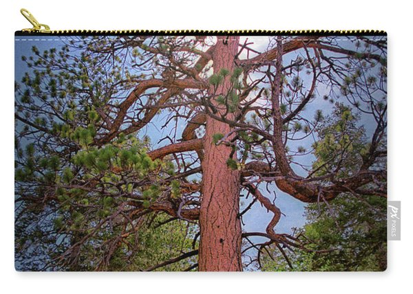Tree Cali Carry-all Pouch