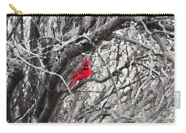 Tree Ornament Carry-all Pouch