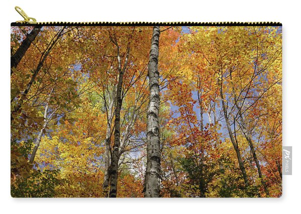 Trees On The Lincoln Woods Trail Carry-all Pouch