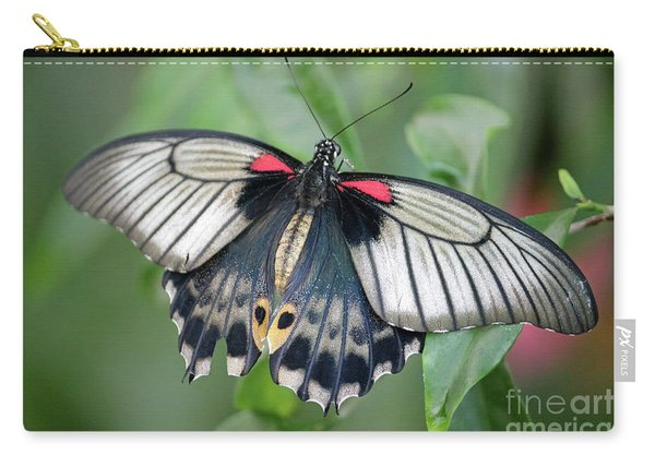 Tropical Butterfly Carry-all Pouch