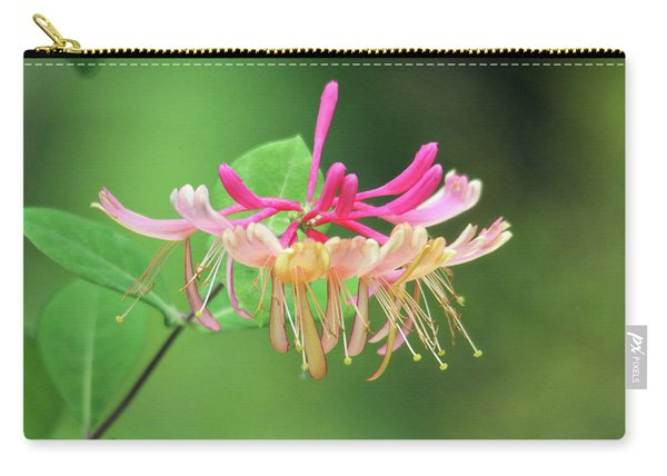 Trumpet Honeysuckle Carry-all Pouch