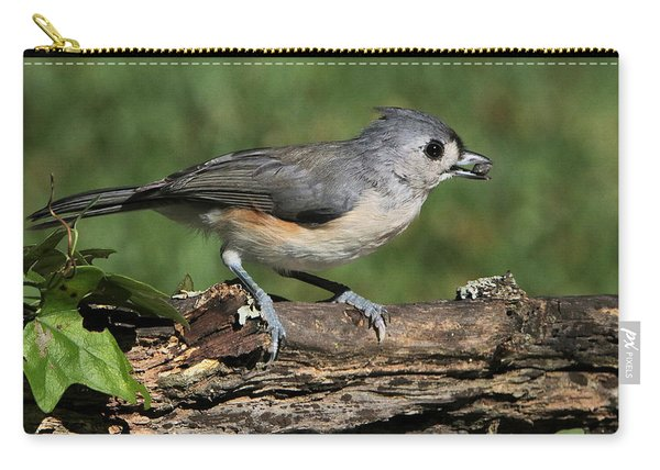 Tufted Titmouse On Tree Branch Carry-all Pouch