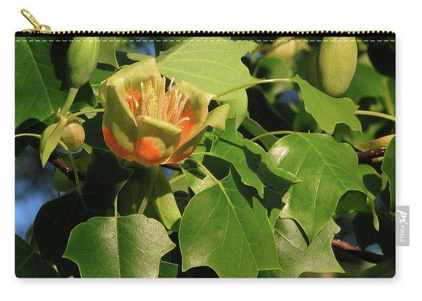 Tulip Poplar Carry-all Pouch