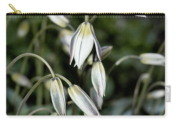 Tulipa Turkestanica Carry-all Pouch