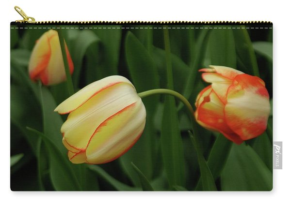 Nodding Tulips Carry-all Pouch