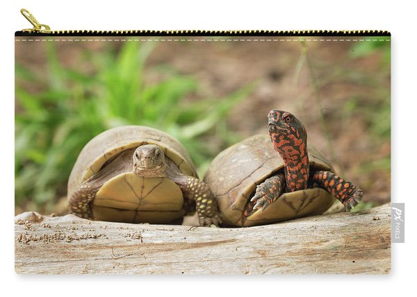 Turtle Friends Carry-all Pouch
