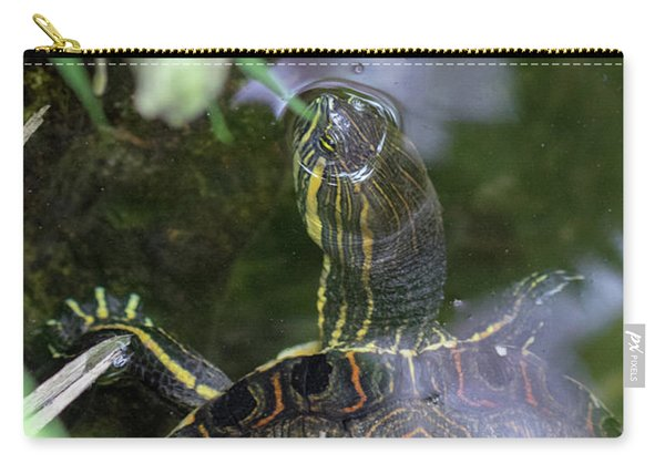 Carry-all Pouch featuring the photograph Turtle Getting Some Air by Raphael Lopez