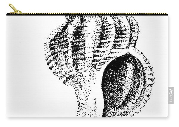 twirly Shell Carry-all Pouch